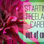 Starting a freelance career out of college